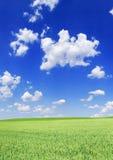 Idylliczny widok, zieleni pole i niebieskie niebo z białymi chmurami, fotografia royalty free