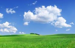Idylliczny widok, zieleni pole i niebieskie niebo z białymi chmurami, obraz royalty free