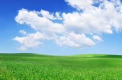 Idylliczny widok, zieleni pole i niebieskie niebo z bia?ymi chmurami, fotografia royalty free