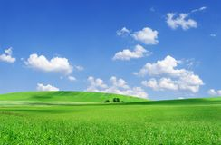 Idylliczny widok, zieleni pole i niebieskie niebo z bia?ymi chmurami, obraz stock