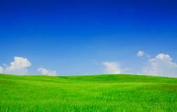 Idylliczny widok, zieleni wzgórza i niebieskie niebo, fotografia royalty free