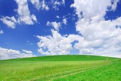 Idylliczny widok, zieleni wzgórza i niebieskie niebo, obrazy royalty free