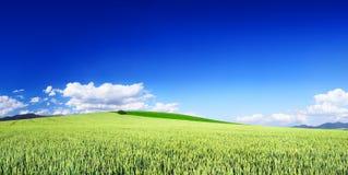 Idylliczny widok, zieleni wzgórza i niebieskie niebo z białymi chmurami, zdjęcie stock