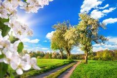 Idylliczny wiejski krajobraz w wiośnie fotografia royalty free