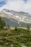 Idylliczny wysokogórski krajobraz przy Austria Obrazy Stock