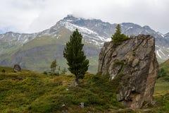 Idylliczny wysokogórski krajobraz przy Austria obrazy royalty free
