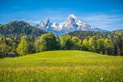 Idylliczny wysokogórski krajobraz z zielonymi łąkami, domami wiejskimi i snowcapped halnymi wierzchołkami, fotografia royalty free