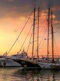 Idylliczny zmierzch w marina Zeas z seagull nad jachty zdjęcia stock