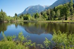 Idyllique amarrez le lac Oberstdorf, végétation dans des couleurs vertes vernales image stock