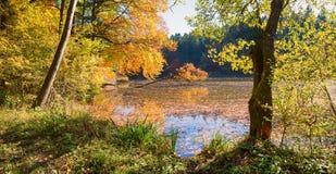 Idyllique amarrez le lac thanning, forêt avec les arbres colorés automnaux photo libre de droits