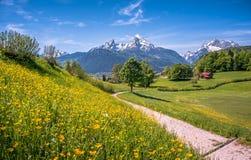 Idyllisch alpien landschap met groene weiden, boerderijen en snowcapped bergbovenkanten stock afbeelding