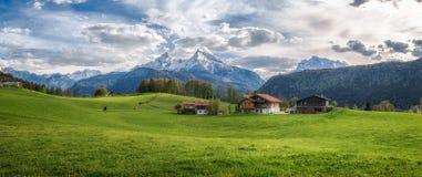 Idyllisch alpien landschap met groene weiden, boerderijen en snowcapped bergbovenkanten royalty-vrije stock foto