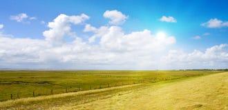 Idyllisch gazon met zonlicht Stock Foto
