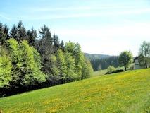 Idyllisch landschap in de lente Royalty-vrije Stock Fotografie