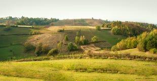 Idyllisch plattelandspanorama op groene die weide, door boom wordt omringd royalty-vrije stock foto