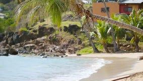 Idyllisch tropisch de baaistrand van Carlisle met wit zand, turkooise oceaan en blauwe hemel bij Antiguaeiland in de Caraïben stock footage