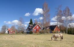 Idyllisch Zweeds plattelandslandschap Stock Afbeelding