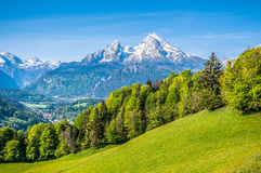 Idyllische alpine Landschaft mit grünen Wiesen, Bauernhäusern und schneebedeckten Gebirgsoberteilen stockfotografie