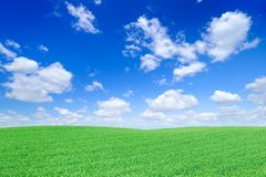 Idyllische Ansicht, grünes Feld und der blaue Himmel mit weißen Wolken lizenzfreies stockbild