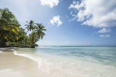 Idyllische Caraïbische kustlijn Royalty-vrije Stock Afbeelding