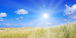 Idyllische duinen met zonlicht Stock Foto's