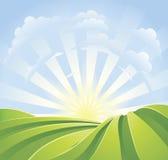 Idyllische grüne Felder mit Sonnenscheinstrahlen Stockbilder