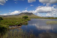 Idyllische Ierse bergmening Stock Foto's