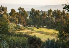 Idyllische Landschaft in Äthiopien Stockbilder