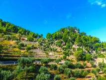 Idyllische Landschaft auf Palma de Mallorca, Spanien Lizenzfreie Stockfotos