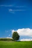 Sommerzeit im Land Stockfoto