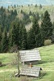 Idyllische melkveehouderijen op alpiene weide royalty-vrije stock afbeelding