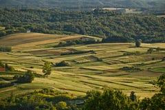 Idyllische natual Landschaft des grünen Tales Stockfotografie