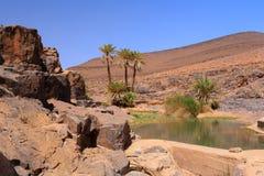 Idyllische oase in Sahara Desert, Marocco, Uarzazat Stock Foto's