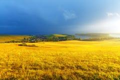 Idyllische Sommerlandschaft mit See und Grün und Lizenzfreies Stockbild