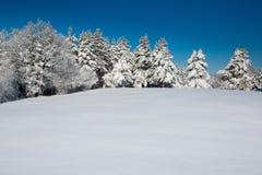 Idyllische Winterszene mit Wald und frischem Schnee Stockfotografie