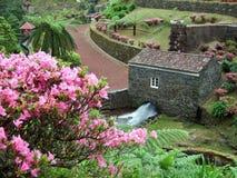 Idyllischer Park am Sao Miguel Island Stockfotografie