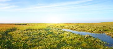 Idyllischer Rasen mit Strom Lizenzfreie Stockbilder