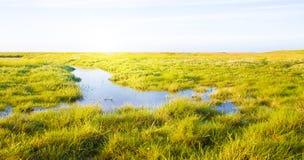 Idyllischer Rasen mit Strom Stockfoto