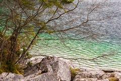 Idyllischer See in den Alpen mit einigen Bäumen Stockbild