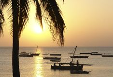 Idyllischer Sonnenuntergang in Afrika Lizenzfreies Stockbild