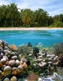 Idyllischer Strand für Freitauchen stockbild
