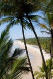 Idyllischer tropischer Strand Stockbild