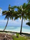 Idyllischer tropischer Strand in Rarotonga Stockbilder