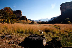 Idyllisches Drakensberg Lizenzfreies Stockfoto