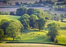 Idyllisches ländliches Ackerland, Cotswolds Großbritannien Stockbild