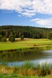 Idyllisches Wasser Lizenzfreies Stockfoto