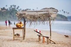 Idyllisk dag på stranden royaltyfria foton
