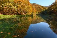 Idyllisk höstplats med sikt på sjön Arkivfoto