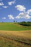 idyllisk landskapsommar Arkivbilder