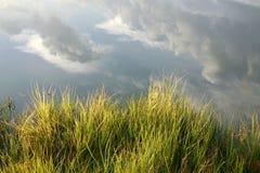 Idyllisk naturbakgrund royaltyfri fotografi